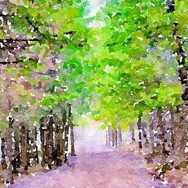 Take Me To The Forest by Susan Rydberg