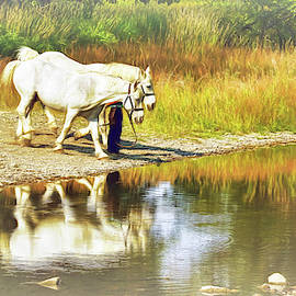 Leading The Horses To Water by Ola Allen