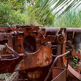 World War 2 Tank -Truk Island by Christina Ford