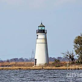Tchefuncte River Lighthouse - Madisonville by Scott Pellegrin