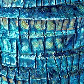 Teal Palm Bark by Cindy Greenstein