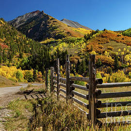 Telluride Ranch Fence by Norma Brandsberg