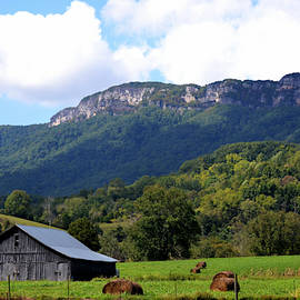 Tennessee Farm Barn by RD Erickson