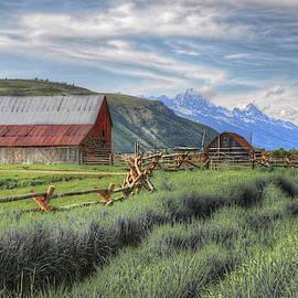Teton Charm by Randall Dill
