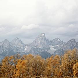Teton Foliage by Jean Clark