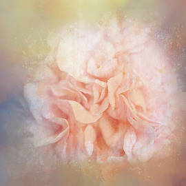 Textured Camellia by Terry Davis