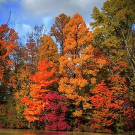 Mary Timman - Thankful Autumn Colors