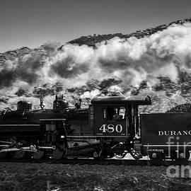 The 480 Durango Silverton Steam Engine in Black and White by Janice Pariza