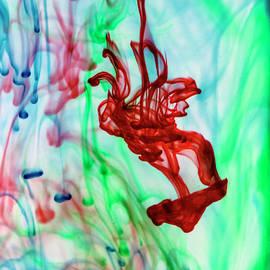 The Acrobat by Eileen Brabender