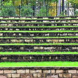 The Amphitheater Steps At Irmo Sc Community Park 2 by Lisa Wooten