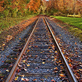 The Autumn Journey by Marcia Colelli