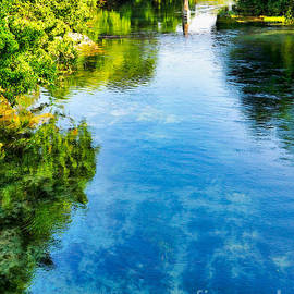 The Beautiful San Marcos River by Gary Richards