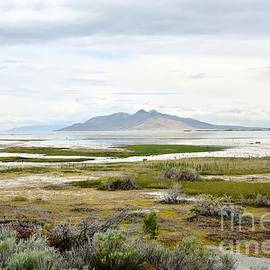 The Beauty of the Great Salt Lake by Debbie Green