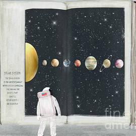 the big book of stars by Bri Buckley