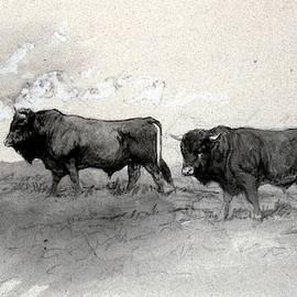Artistic Global - The Bulls
