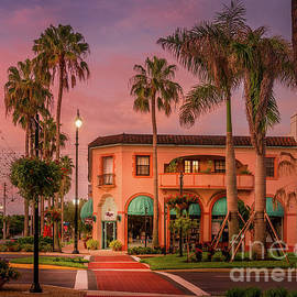 The Charm of Venice, Florida by Liesl Walsh