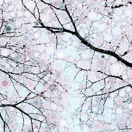 The Color Of Spring by Susan Maxwell Schmidt