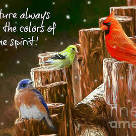The Colors Of The Spirit by Tina LeCour