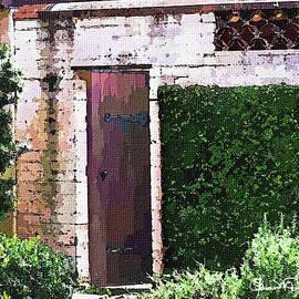 The Door 3 by Susan Molnar