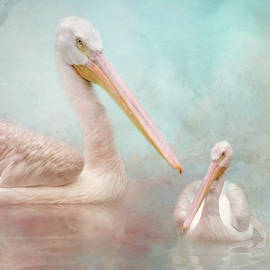 The Elegant White Pelican by Jai Johnson
