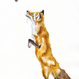 The Fox and the Grapes by Debra Hall