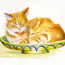 The Fruit Bowl by Debra Hall