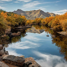 The Golden River  by Saija Lehtonen
