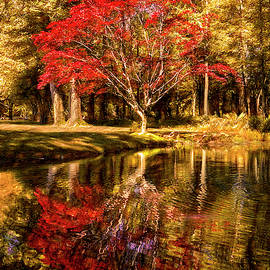 The Golds and Reds of Autumn by Debra and Dave Vanderlaan