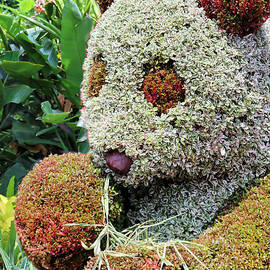 The Great Panda Topiary by Diann Fisher