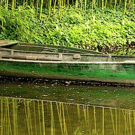The Green Boat by E Faithe Lester