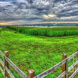 The Iron Horse Corn Field U G A Iron Horse Farm Agriculture Art by Reid Callaway