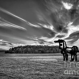 The Iron Horse Sunset B W The Iron Horse Collection Art by Reid Callaway