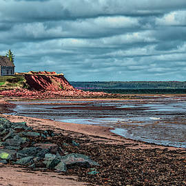 The Light on Panmure Island by Marcy Wielfaert