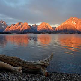 The Log Along The Lake by Michael Morse