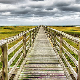 The Long Boardwalk at Gray's Beach by Robert Anastasi