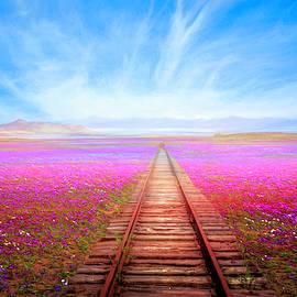 The Long Way  by Debra and Dave Vanderlaan
