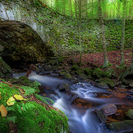 The Lost Bridge by Bill Wakeley