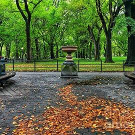 The Mall in Fall - Central Park New York by Miriam Danar