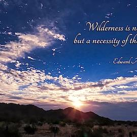 The Necessity of Wilderness by Judy Kennedy