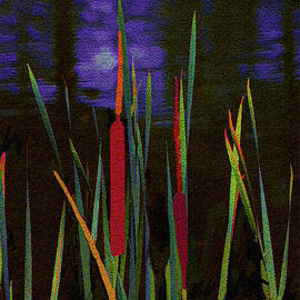 The Night Life of Cattails by Claudia O'Brien