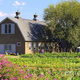 The Old Queens Farm in Autumn by Dora Sofia Caputo Photographic Design and Fine Art