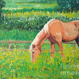 The Palomino and Buttercup Meadow by Abbie Shores