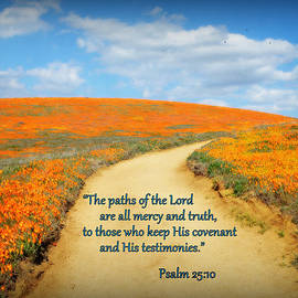 The Paths Of The Lord by Glenn McCarthy Art and Photography