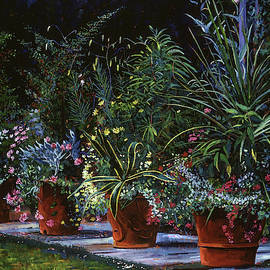 David Lloyd Glover -  The Potted Garden