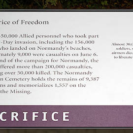 The Price of Freedom Plaque by Sally Weigand