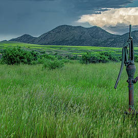 The Pump in the Field by Marcy Wielfaert