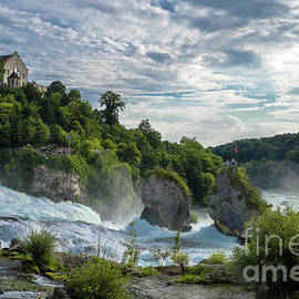 The Rhine Falls by Michelle Meenawong