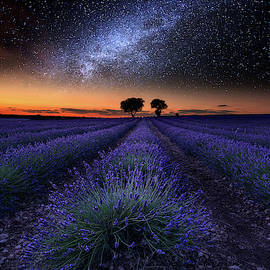 The Rise Of Dawn by Jorge Maia