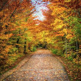 The Road to Fall by Deborah Klubertanz