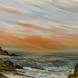 The Secret Cove by Edward Theilmann